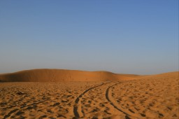 Una noche en el desierto del Thar