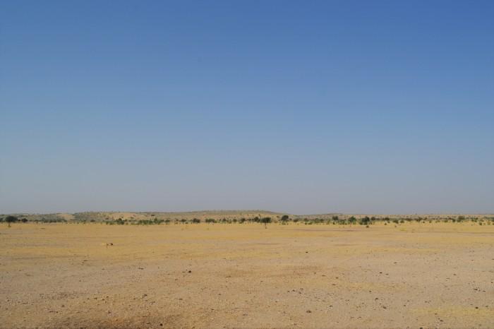 llegada al desierto del Thar Jaisalmer