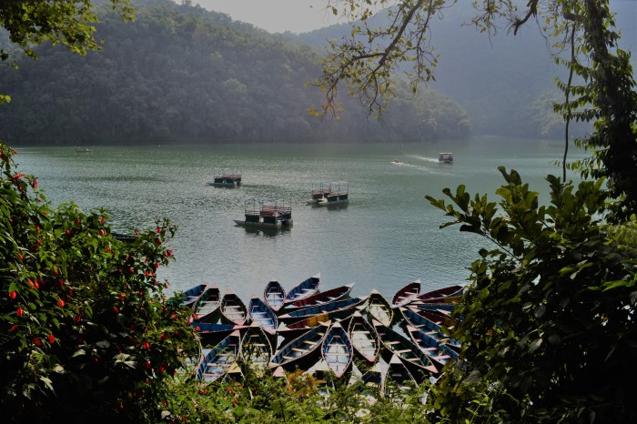 barcas en Pokhara