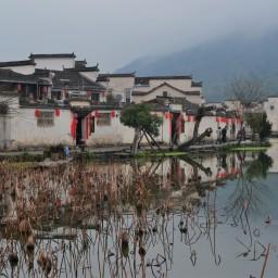 China, el gran cisne negro