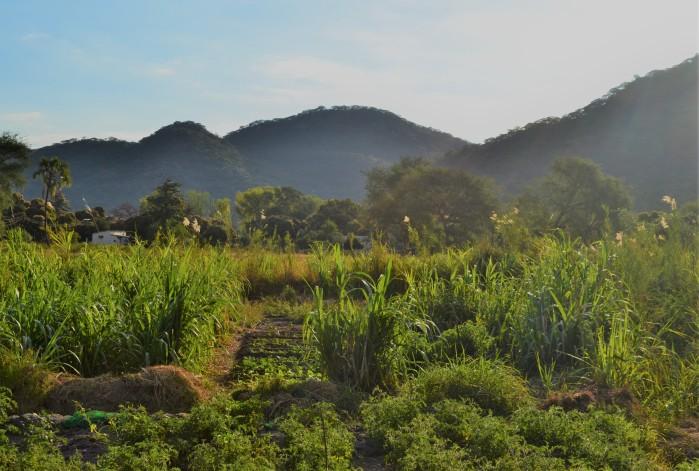 Malaui al amanecer