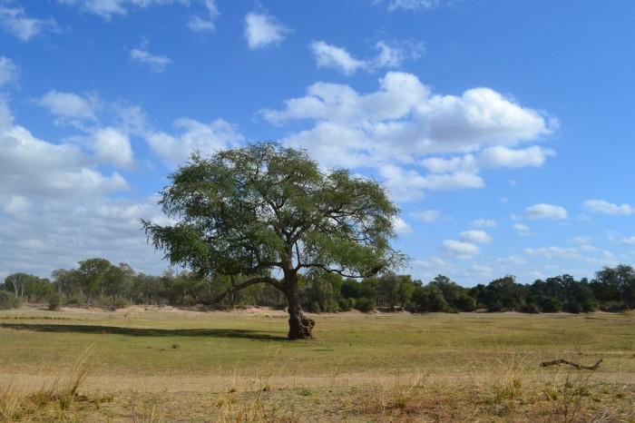 Paisajes de Zambia
