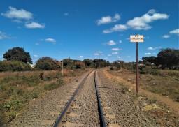 Próxima parada: Livingstone