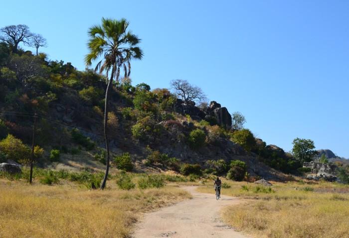 Camino a Mufasa Lodge