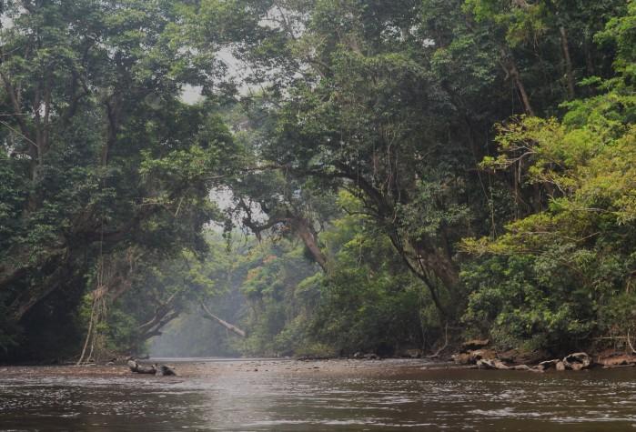 Río Taman Negara