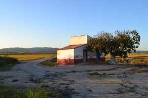Delta del Ebro paisaje