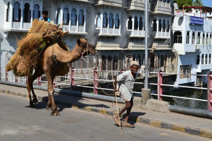 La India viajar