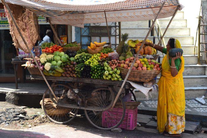 La India viaje